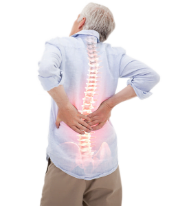 bakcpain chiropractica mobile