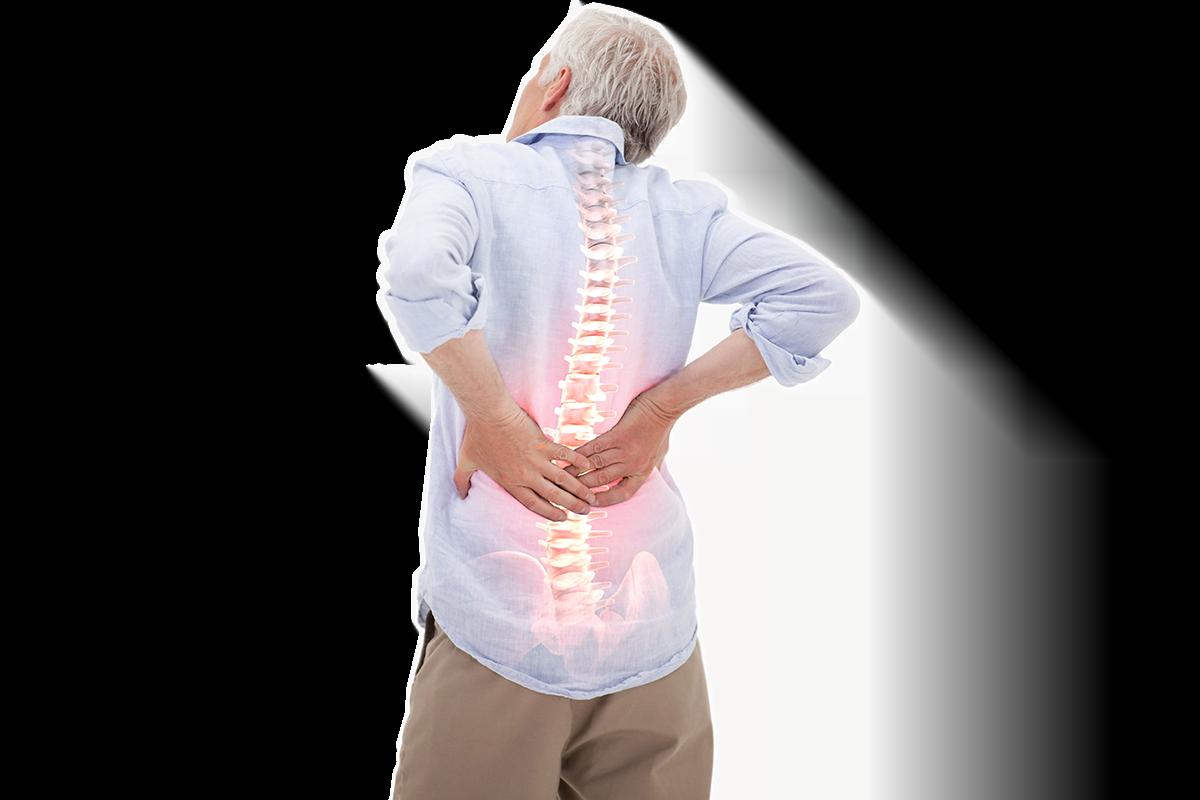 bakcpain chiropractica
